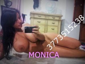 3773525238